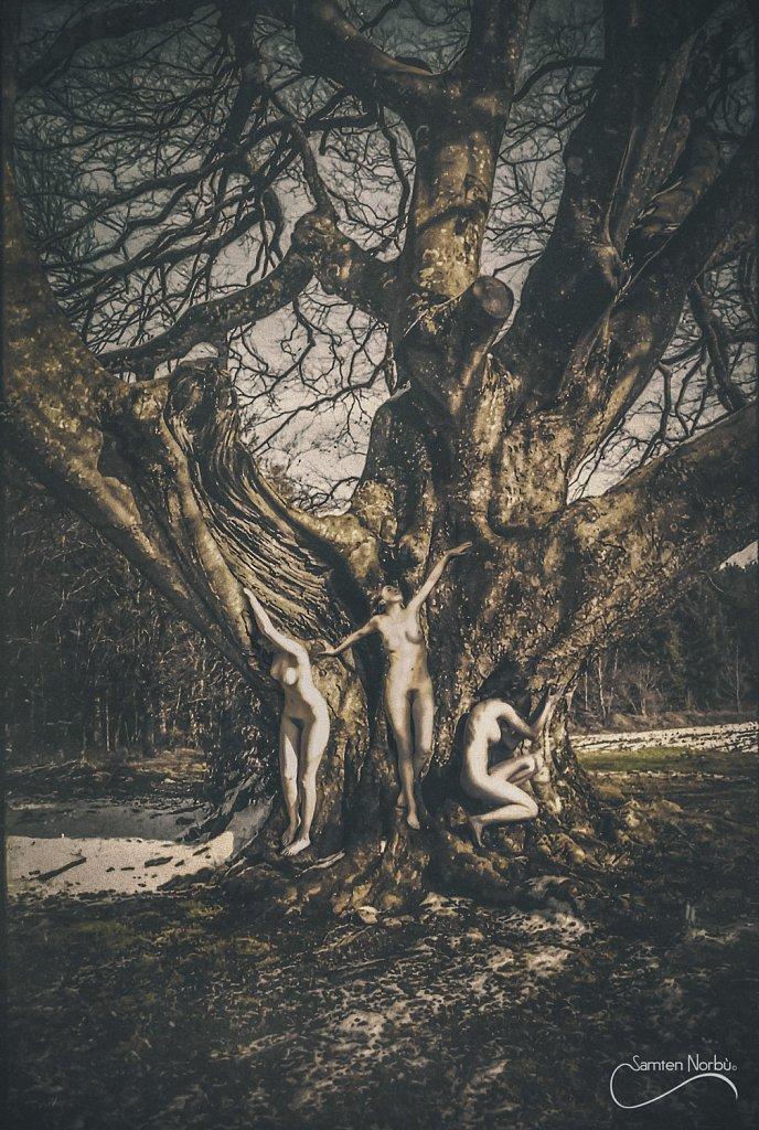 Natural Nudes