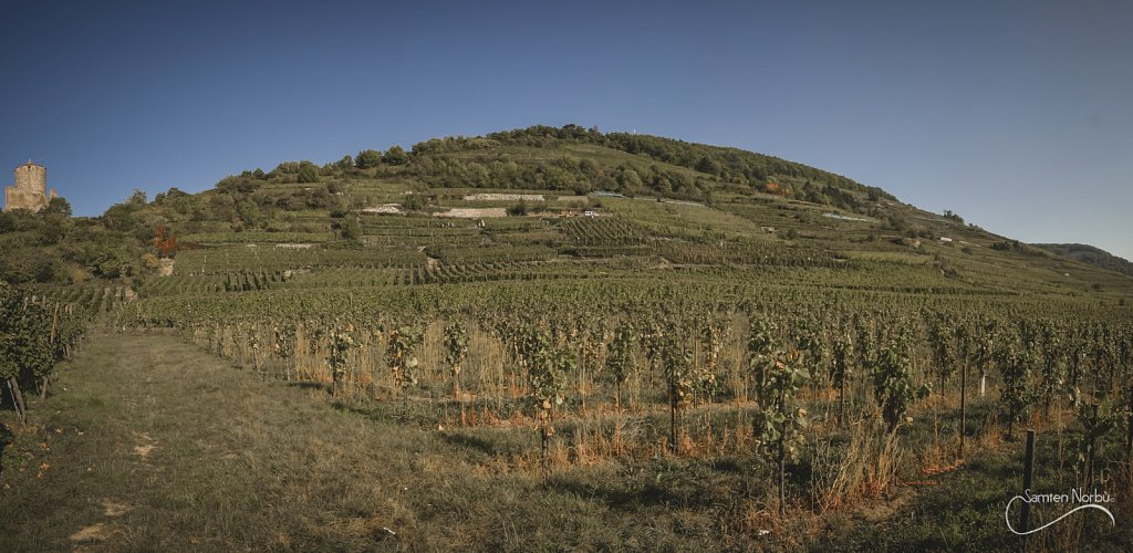Alsace-020.jpg