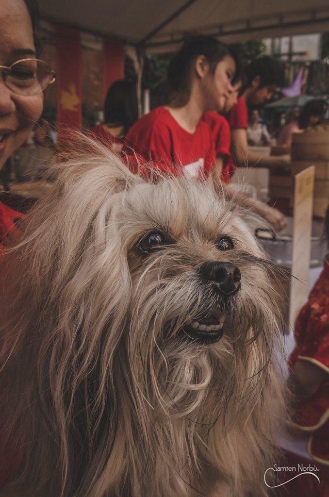 Chinatown-013.jpg