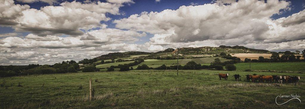 Irlande-Angleterre-034.jpg