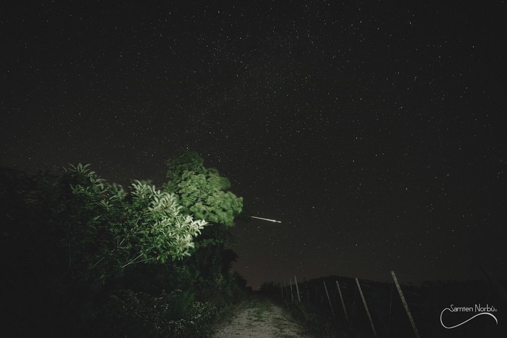 Nature-006.jpg