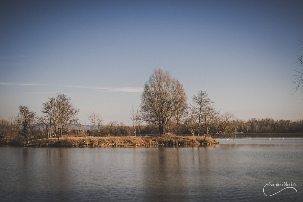 Nature-029.jpg