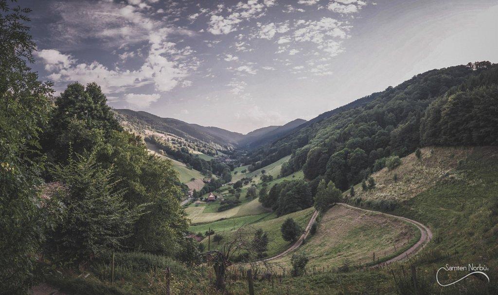 Vosges-001.jpg