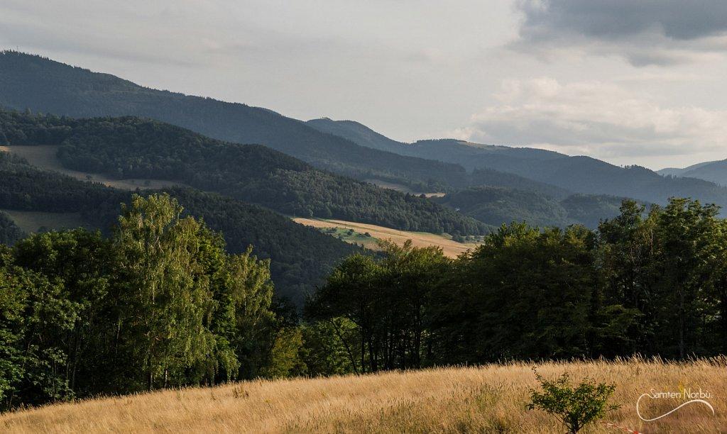 Vosges-007.jpg