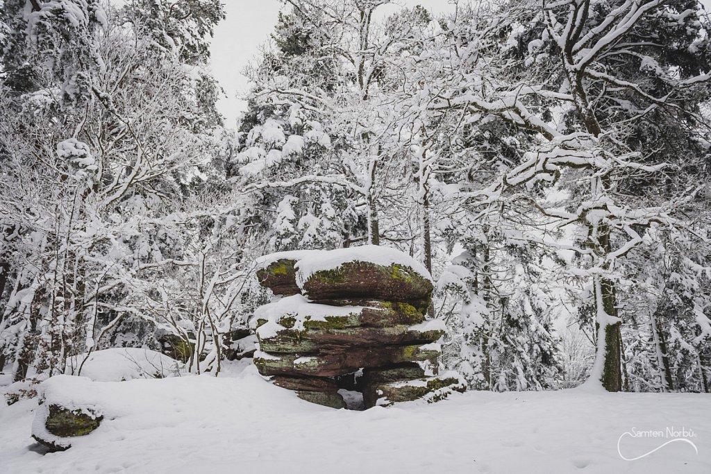 Vosges-030.jpg