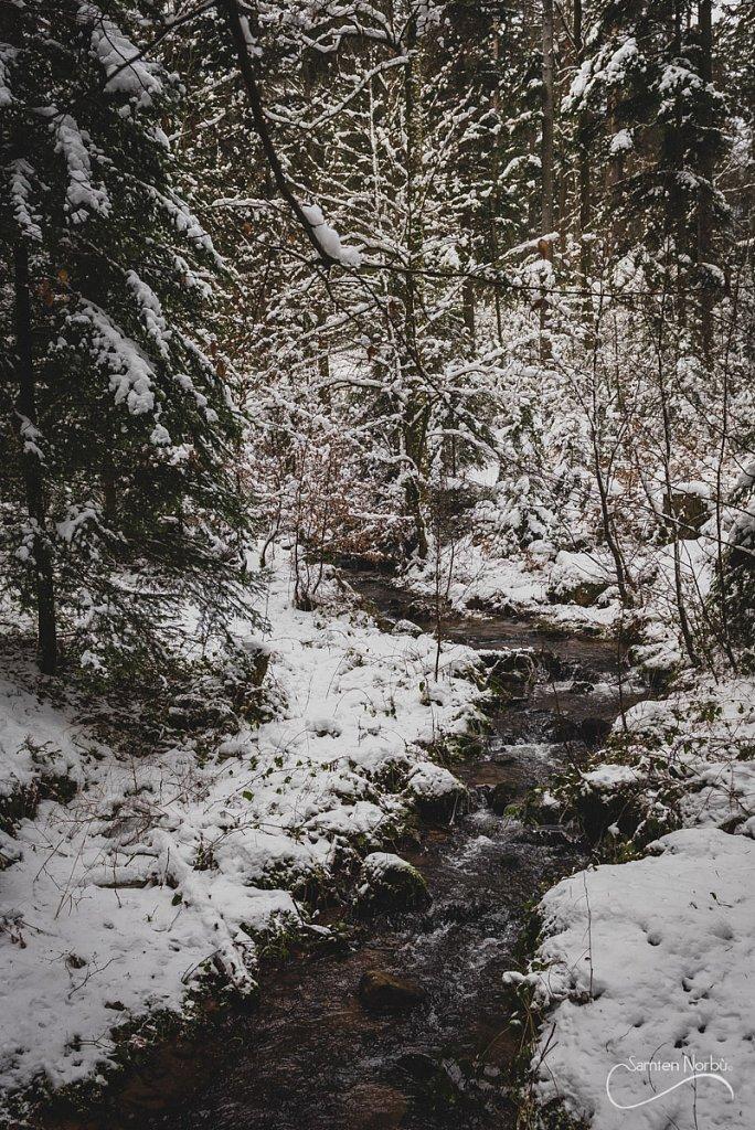 Vosges-037.jpg
