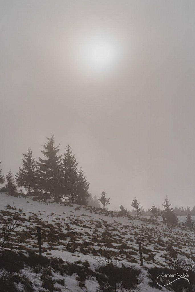 Vosges-048.jpg