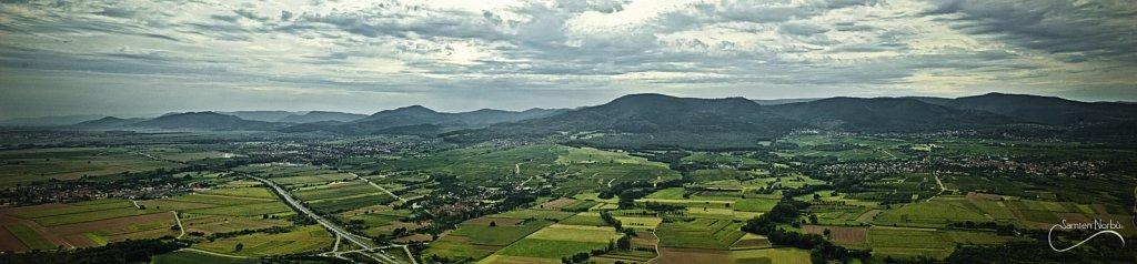 Alsace-001.jpg