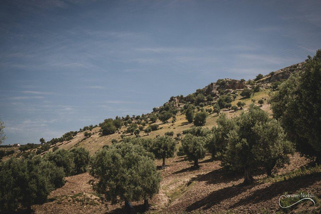 Maroc-019.jpg