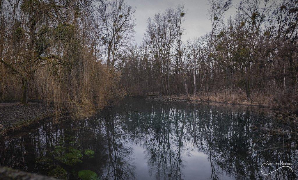 Nature-018.jpg