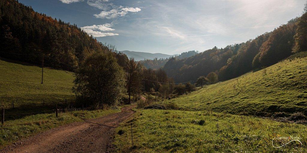 Vosges-003.jpg