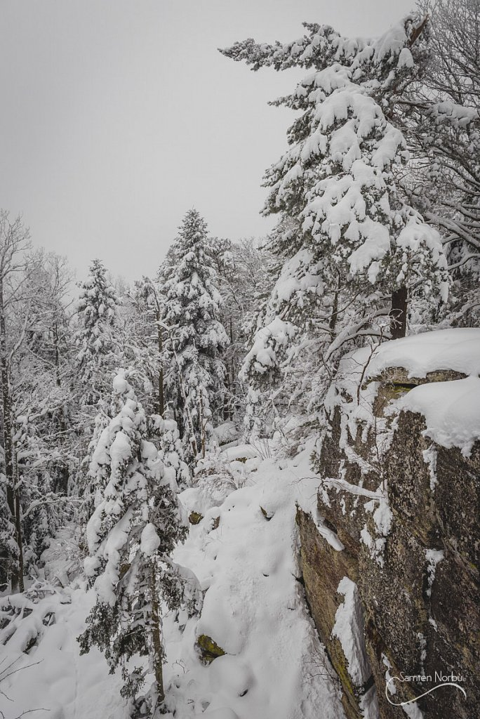 Vosges-029.jpg