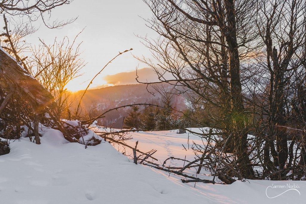 Vosges-040.jpg