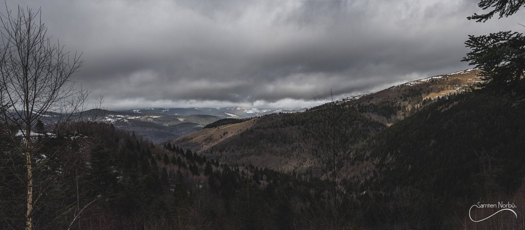 Vosges-050.jpg
