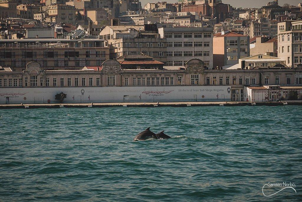 Istanbul-10.jpg